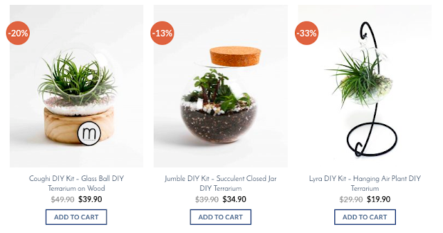 how to make your own terrarium singapore couple activity