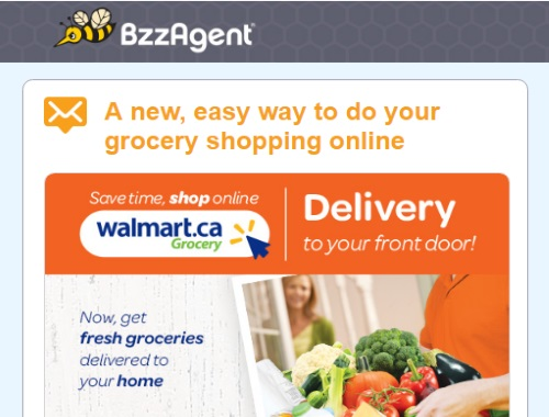 Bzzagent Walmart Home Delivery BzzCampaign