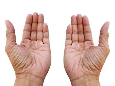 cara membaca garis tangan kiri