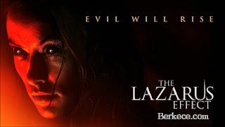 Daftar Film Horror Barat Terbaru 2018