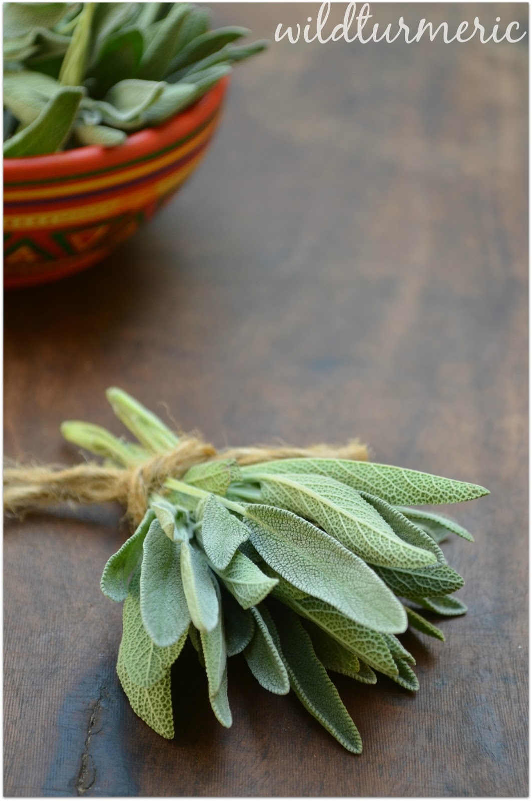 10 Top Medicinal Uses & Side Effects Of Sage (Salvia Officinalis) | Salvia