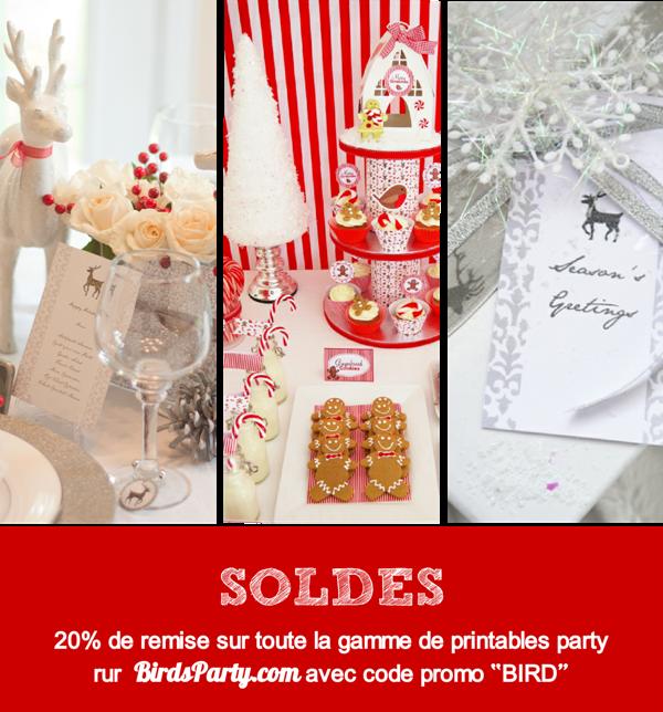 SOLDES de Noël sur BirdsParty.fr