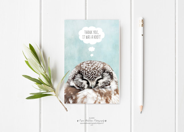 Paper Meadows Photography Blog-Free Printable Greeting Card-Owl Thank You Card