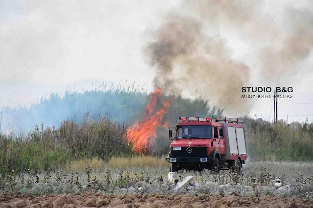Σε δυο πυρκαγιές επενέβη η πυροσβεστική στο Ναύπλιο (βίντεο)