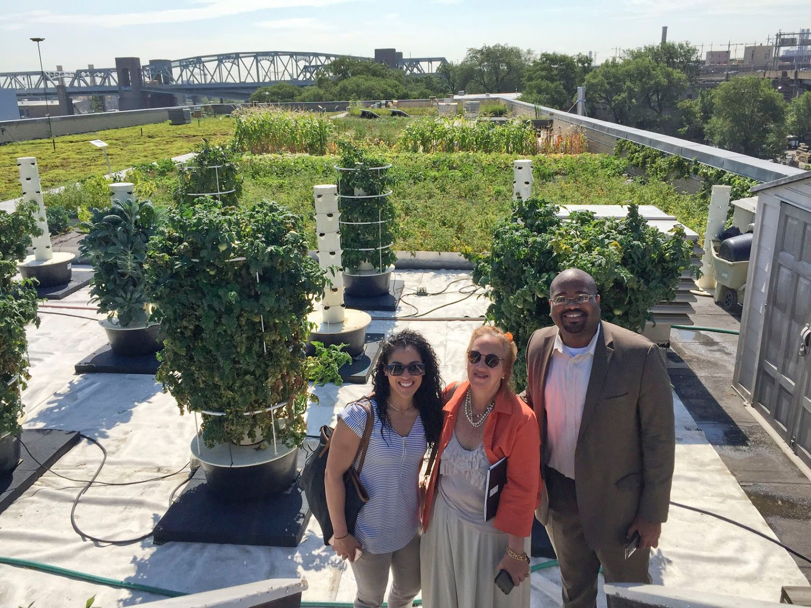 Roosevelt Islander Online Everything You Want To Know About Green Roofs Roosevelt Island Ps Is 217 Green Roof Supporters Take Fantastic Tour Of Nyc Parks Department 5 Borough Green Roof On Randall S