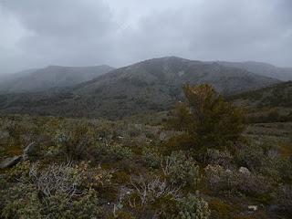 Collado del Castillar del Moroquero (1.493 m)