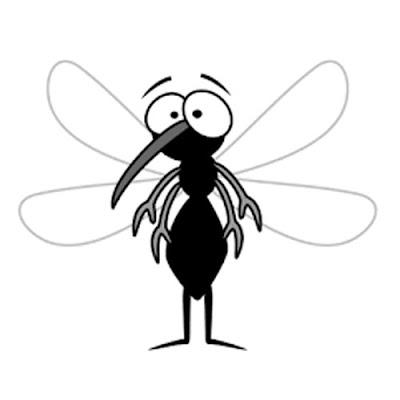 Kenapa ada Nyamuk Apa Fungsi dan Manfaat Nyamuk