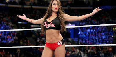 WWE All Superstar And Divas HD Wallpaper