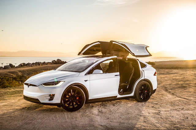 Tesla Model X Five Star Pocket for Security Standards