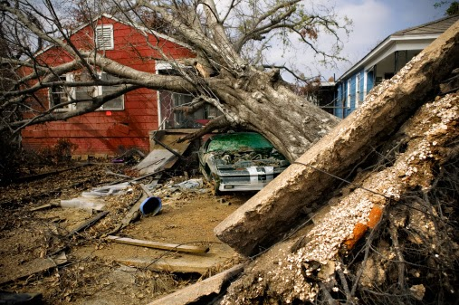 large tree fallen on a car and house.