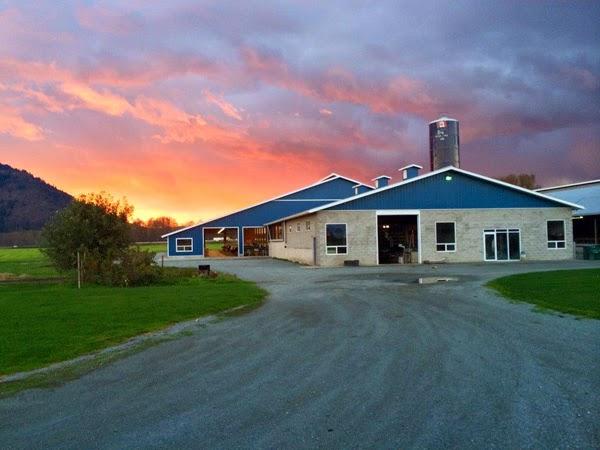 Canadian Sheet Steel Building Institute Blog Announcing