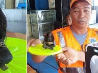 Jenglot Bersila Ditemukan Warga di Pantai Pulau Harapan, Bikin Merinding!