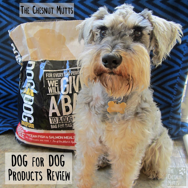 The Chesnut Mutts Dog for Dog Products Review