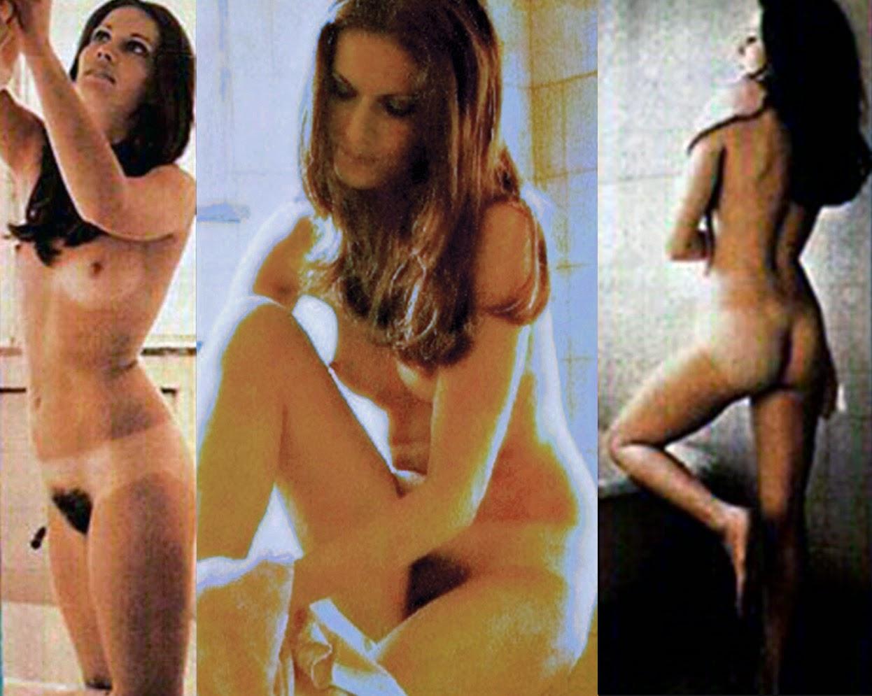 Pamela Hensley Nude 16