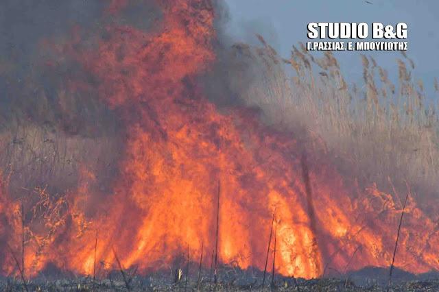 Υψηλός και σήμερα Κυριακή ο κίνδυνος για πυρκαγιές στην Αργολίδα