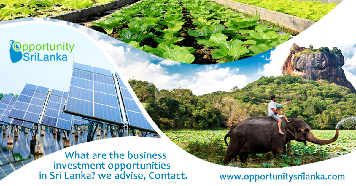 Investment Opportunities in SriLanka