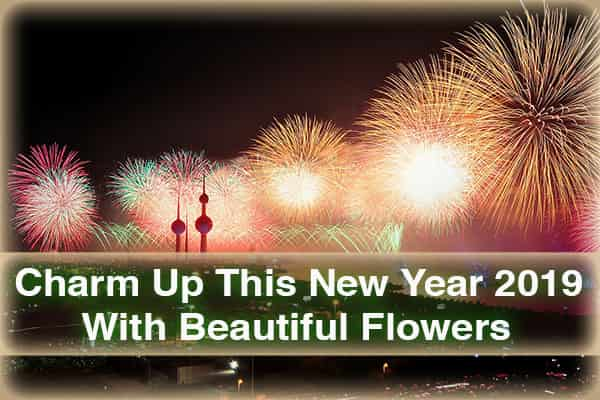 Friends Charm Up this New Year 2019 with Beautiful Flowers | How Webs