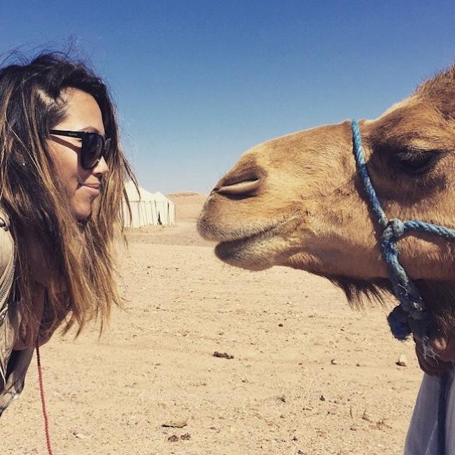 Camel ispy toe
