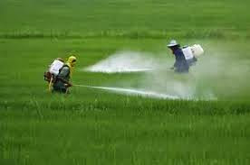 Contaminação do solo