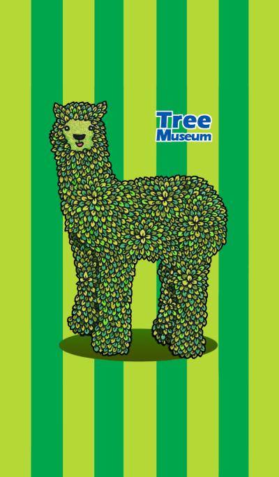 Tree Museum - Alpaca