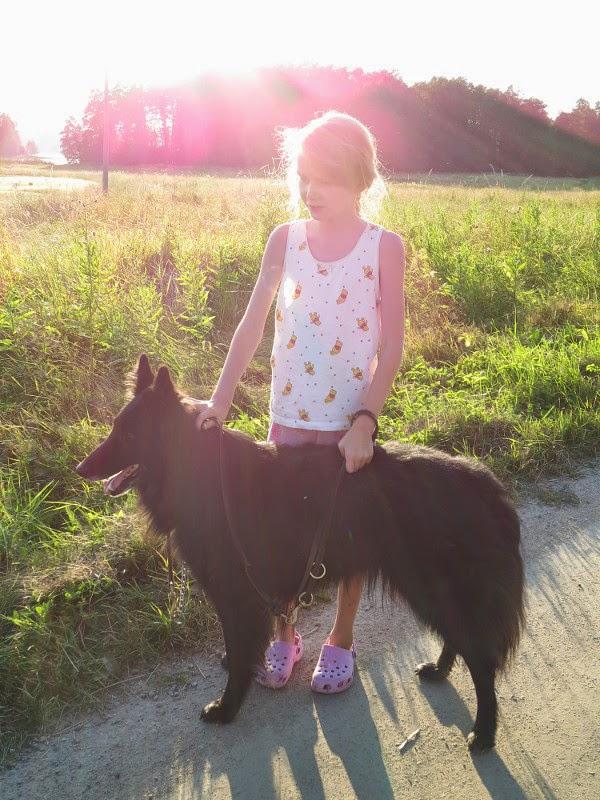 belgianpaimenkoira belgian sheepdog shepherd Torre d'Arese groenendael