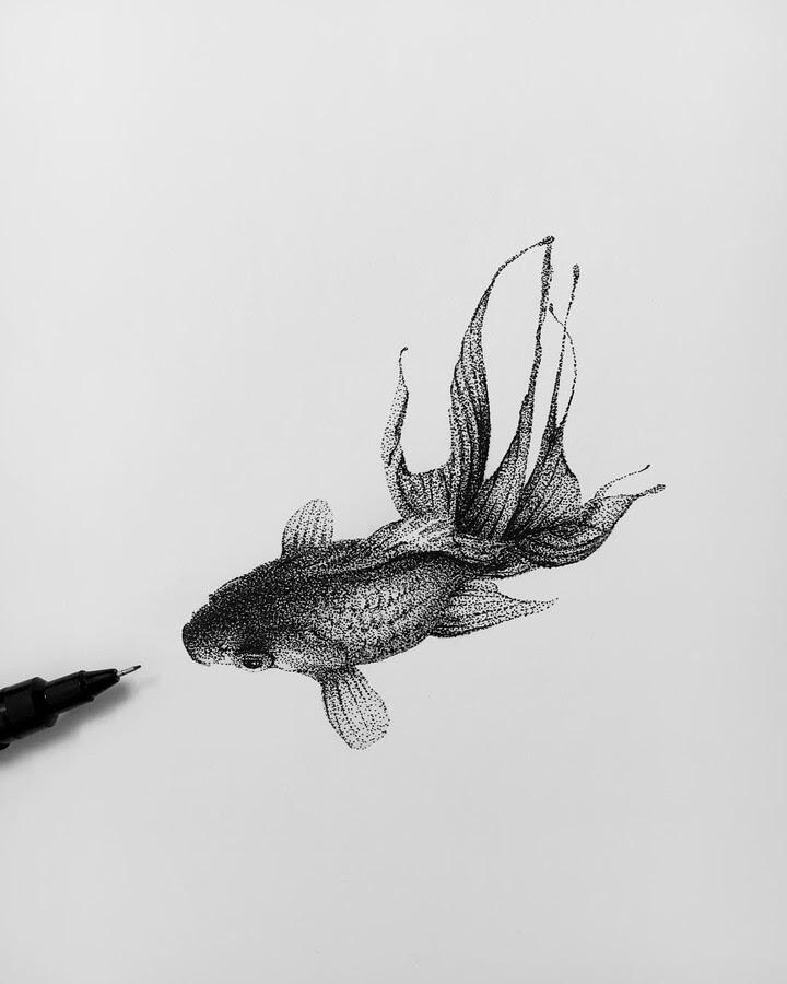 04-Goldfish-Rostislaw-Tsarenko-www-designstack-co