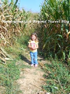 Corn Maze at Strite's Orchard in Harrisburg Pennsylvania