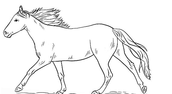 wie man ein laufendes pferd zu ziehen  free mandala