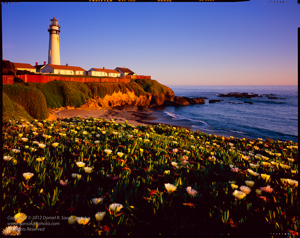a photo of the pigeon point lighthouse captured on fujichrome velvia 100