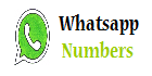 Find real Girls WhatsApp Numbers for Chatting Friendship - Mobile numbers for Chat