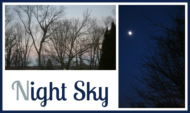 looking at the night sky with kids