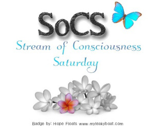 http://lindaghill.com/2016/03/25/the-friday-reminder-and-prompt-for-socs-march-2616/