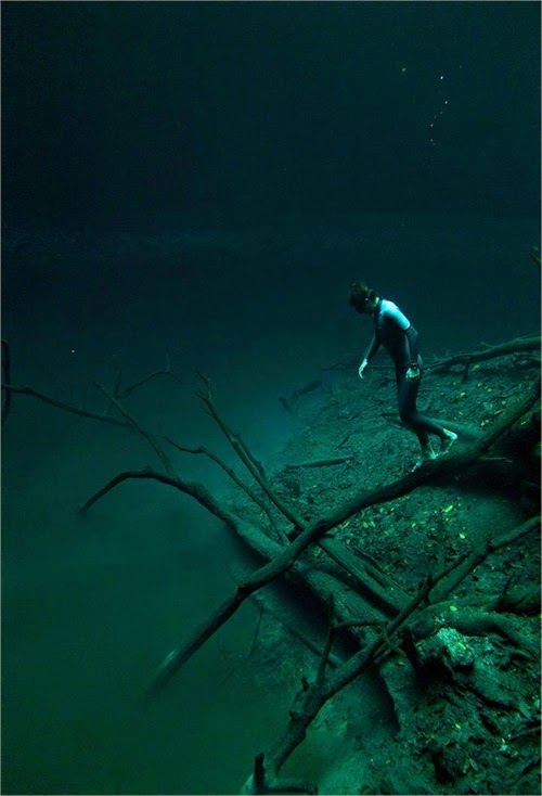 Cenote Angelita Mystical Underwater Mexico