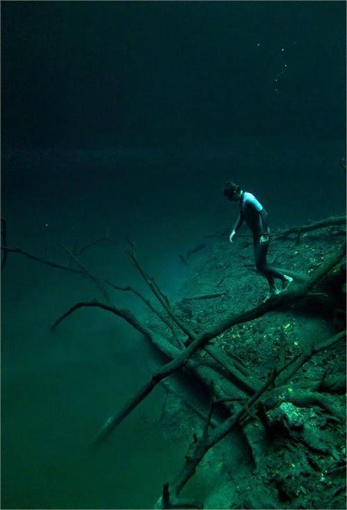 Cenote Angelita Mystical Underwater Mexico