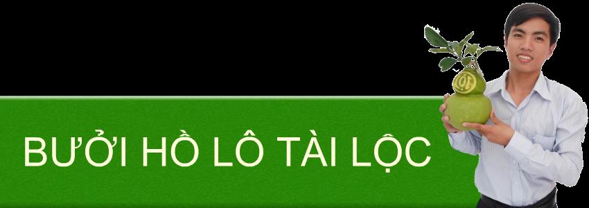 BUOI-HO-LO-TAI-LOC-LAM-QUA-TET-DOC-DAO-Y-NGHIA