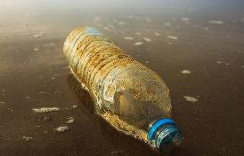 Почему пластик признан главной угрозой 2018 года?