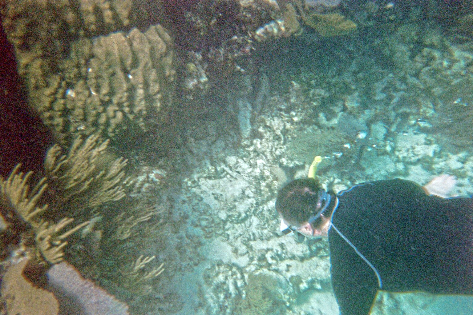 Belize Central America geology travel trip tour reef karst caves ocean coral copyright RocDocTravel.com