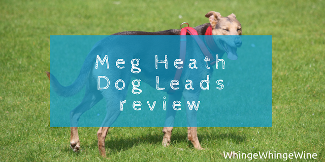 Meg Heath Dog Leads: Bespoke dog martingale harness and car boot safety lead review