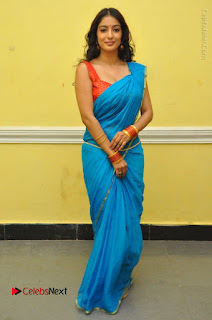 Telugu Actress Vaibhavi Stills in Blue Saree at Www.Meena Bazaar Movie Opening  0103.JPG