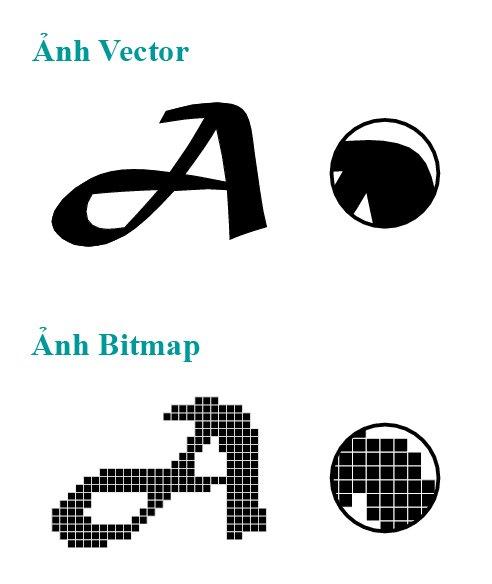 Bitmap hay Vector