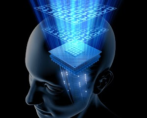 does brain store Memories in it? how that works? how brain can store Memories