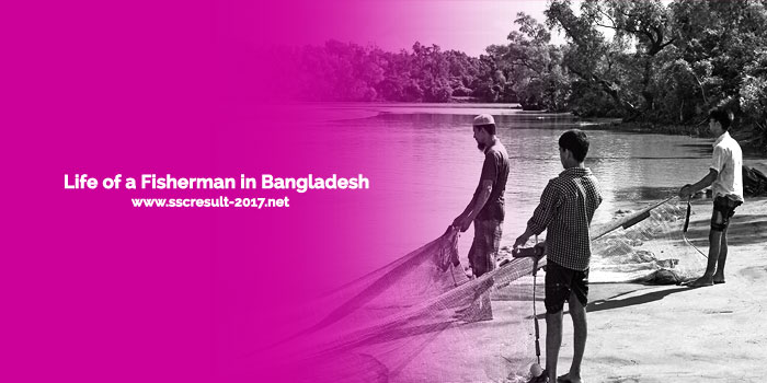 Life of a Fisherman in Bangladesh - Essay