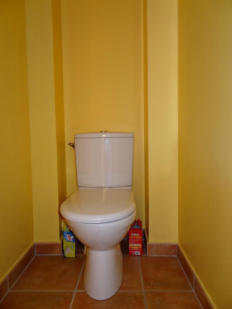 Peinture Pour Les Toilettes notre maison en provence: septembre 2011