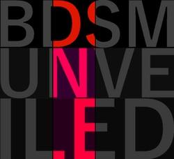 BDSM Unveiled logo