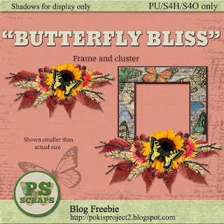 BUTTERFLY BLISS 9/19/2017