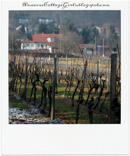 Weisenheim am Berg Germany