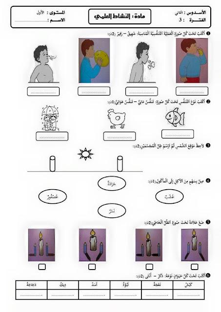 المستوى الأول: المراقبة المستمرة الفترة 3 مادة النشاط العلمي