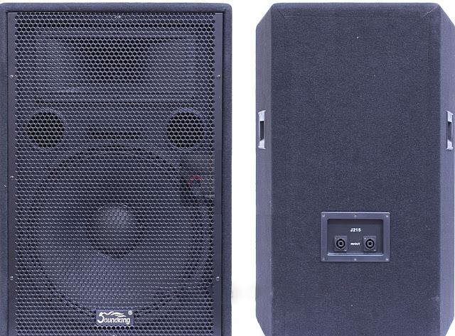 Loa hội trường Soundking J215