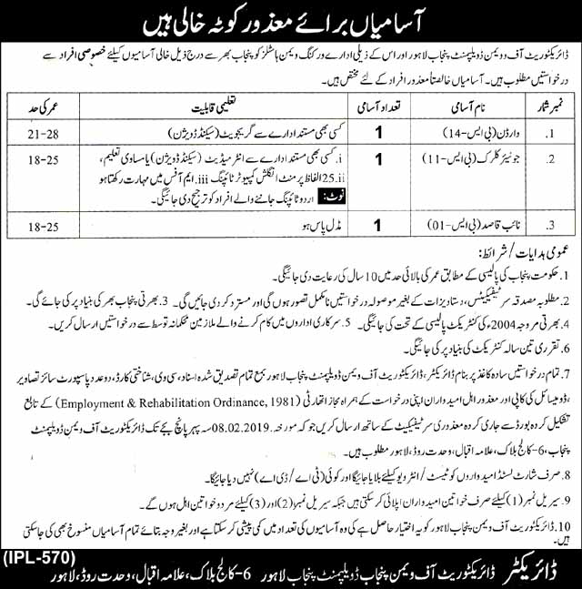 Jobs in Directorate of Women Development Punjab for Disable People