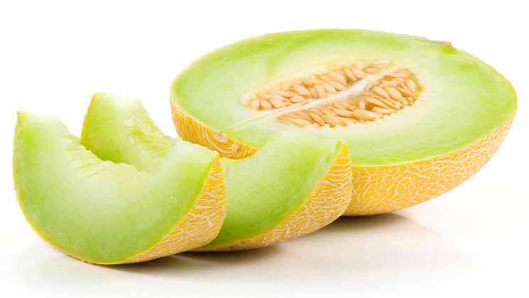 Inilah 7 Kandungan Dan Manfaat Buah Melon Untuk Kesehatan
